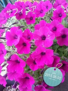 2015-05-02-12-07-44_deco.jpg